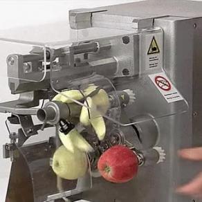 자동 사과 껍질 손질기