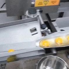 노른자 흰자 분리 자동화 기계